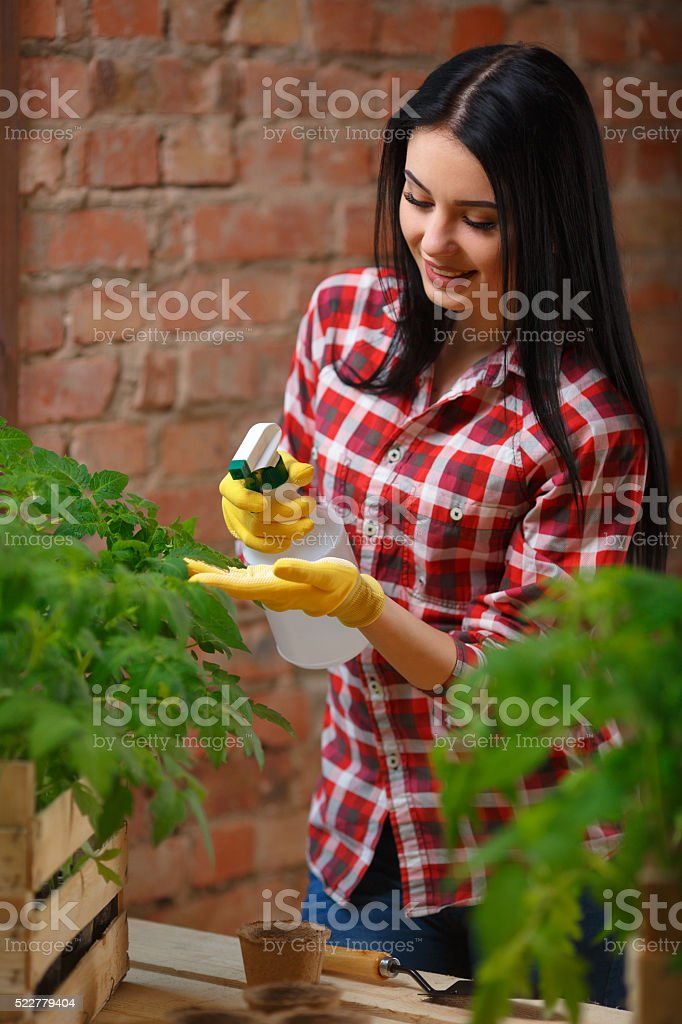 Portrait of a charming young female gardening stock photo