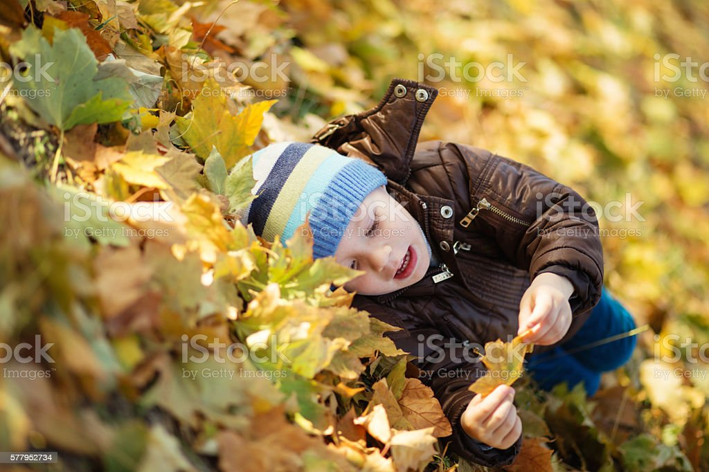 Portrait of a cheerful little boy wallow in fall foliage stock photo