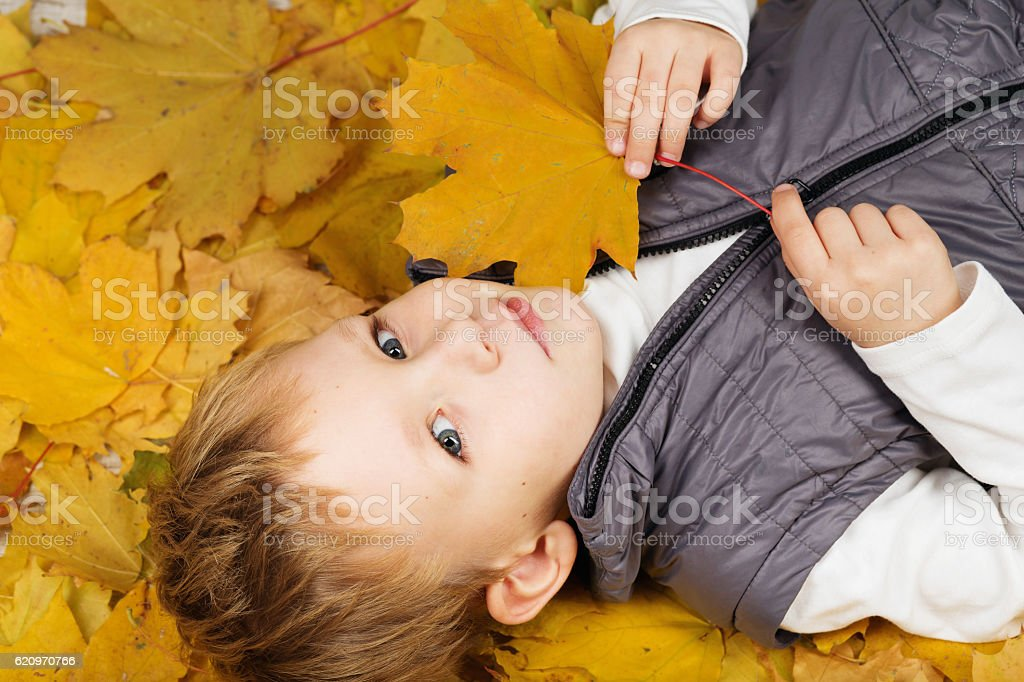 Portrait of a cheerful little boy wallow in fall foliage. stock photo