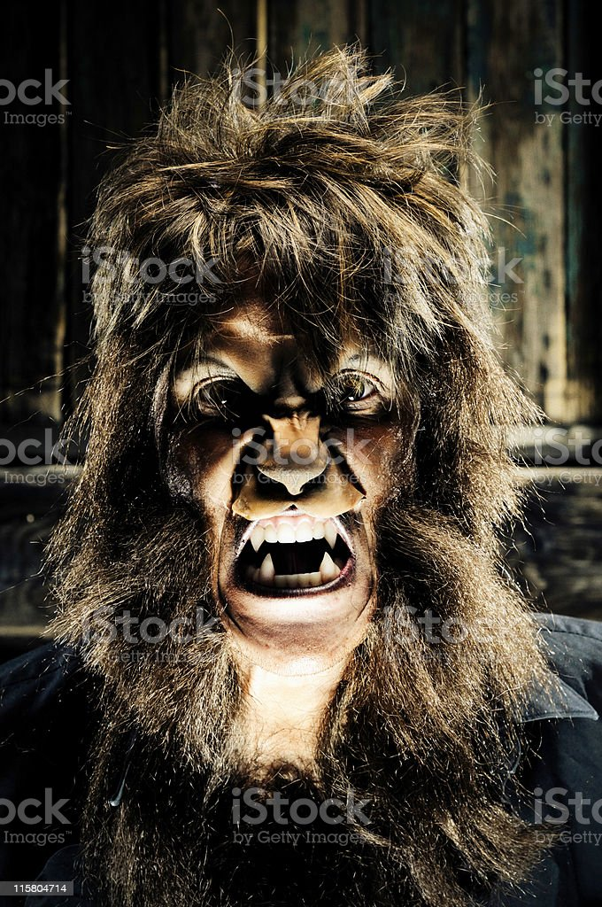 Portrait of a dim lit werewolf royalty-free stock photo