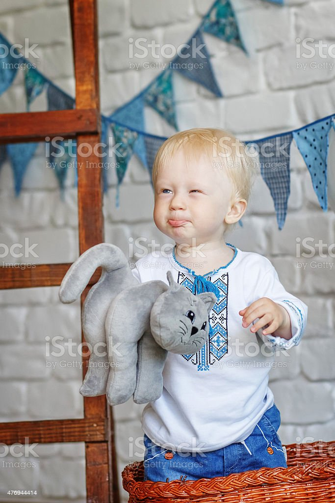 Portrait of a funny little boy with a toy kitten stock photo