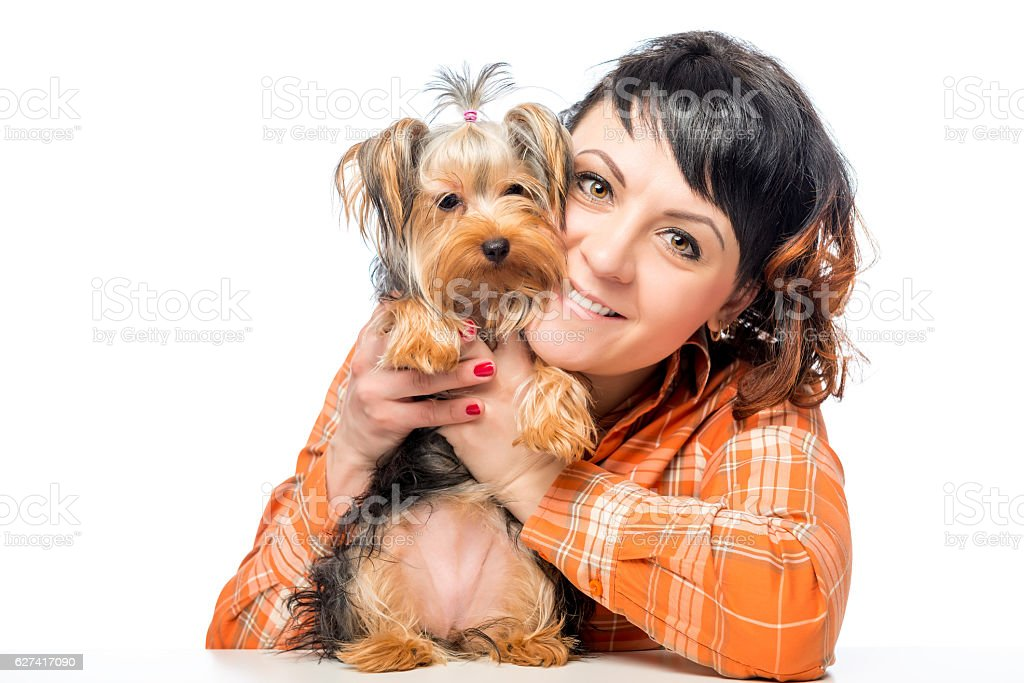 portrait of a girl in the studio with Yorkshire Terrier stock photo