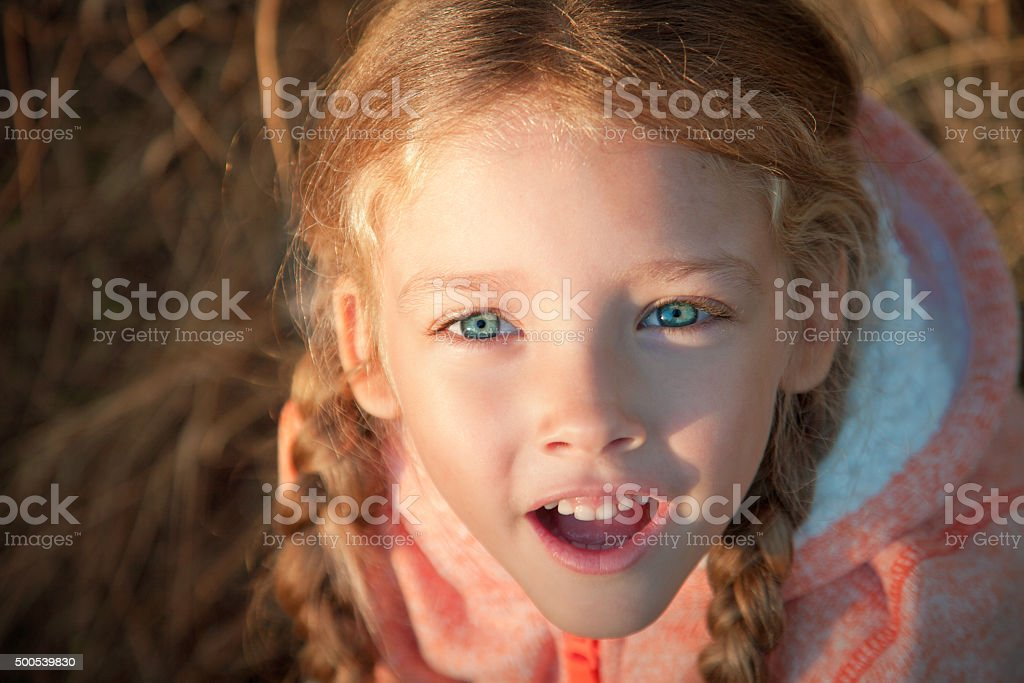 Portrait of a girl with pigtails closeup outdoors stock photo