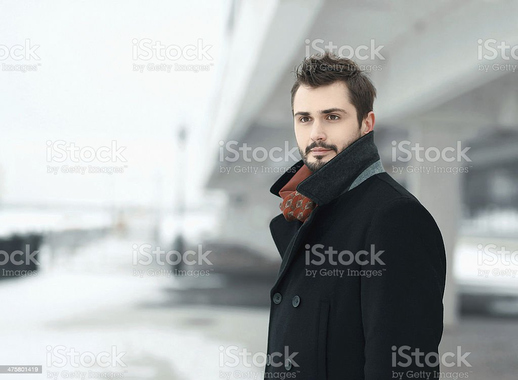 Portrait of a handsome stylish young man brunette stock photo