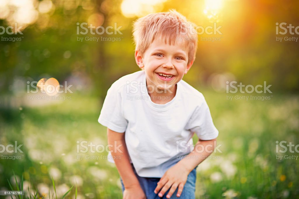 Portrait of a happy little boy in dandelion field stock photo
