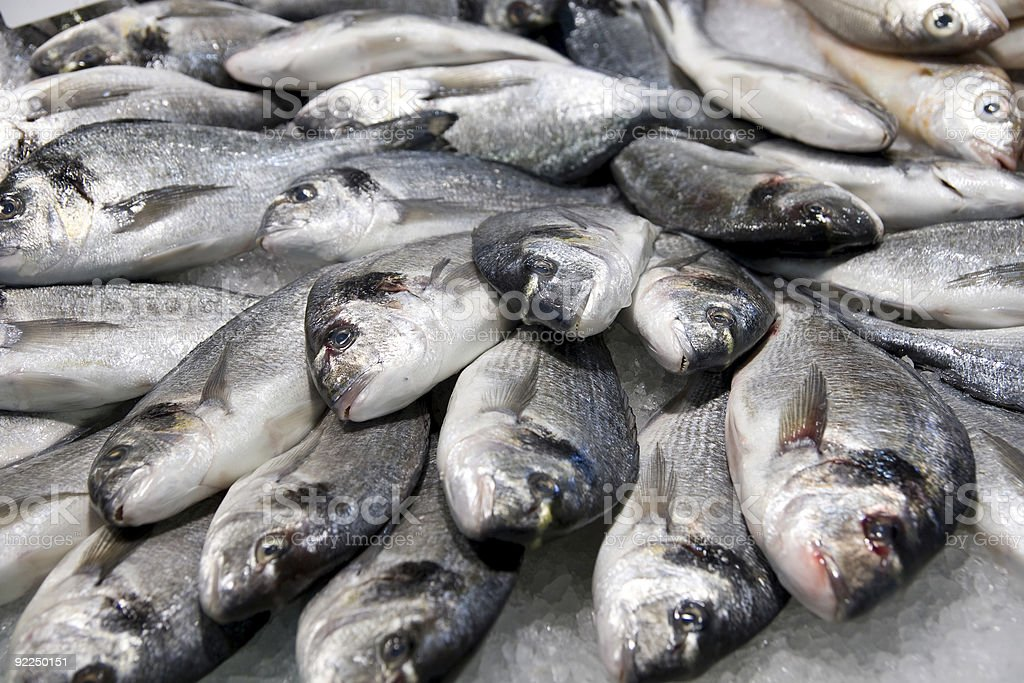 Portrait of a large pile of silver fish on ice stock photo