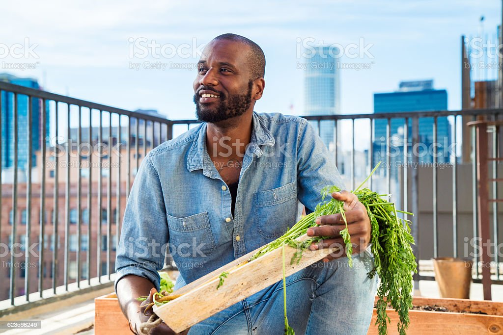 Portrait of a man tending to his rooftop garden stock photo