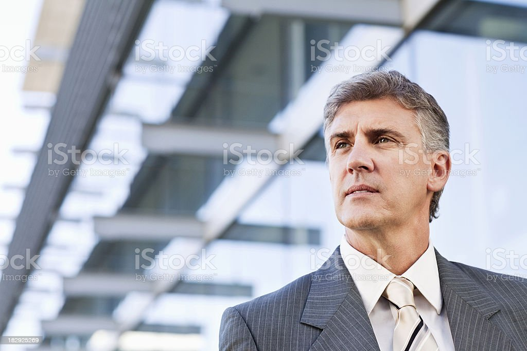 Portrait of a Middle-Aged Businessman royalty-free stock photo