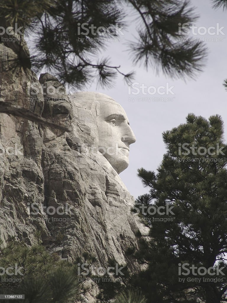 Portrait of a President royalty-free stock photo