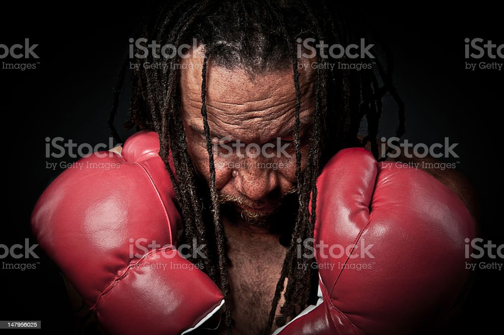 Portrait of a Prize Fighter stock photo