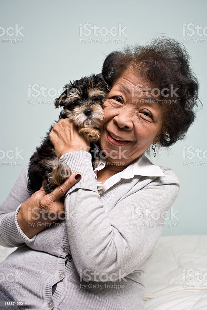 Portrait of a Senior Asian Woman and Pet puppy royalty-free stock photo