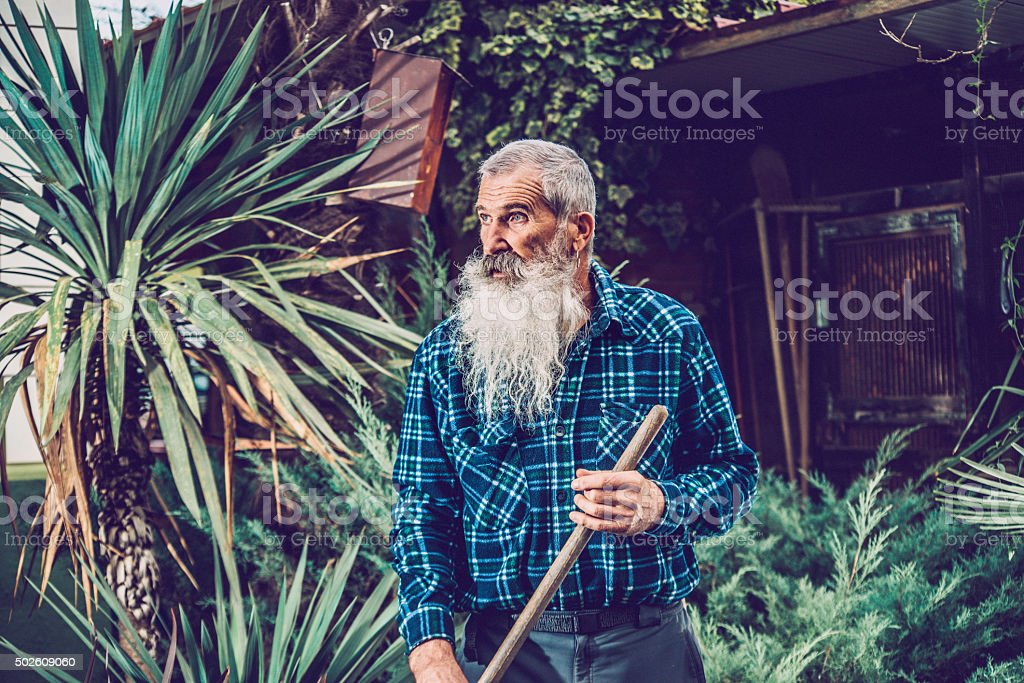 Portrait of a Senior Man with Extremely Long Beard Outdoors stock photo