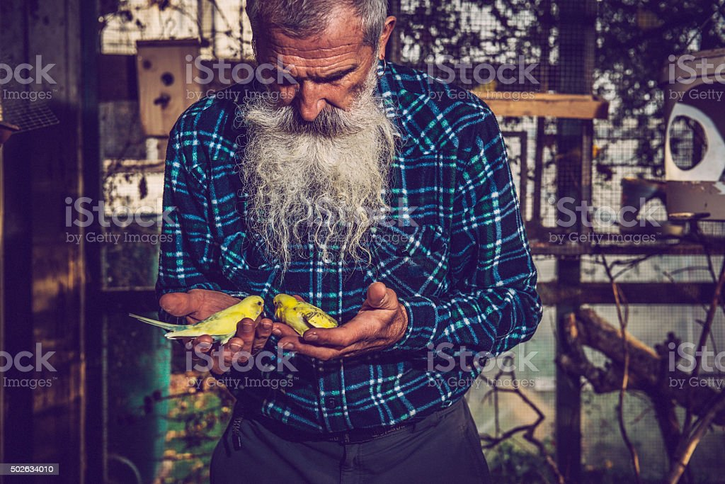 Portrait of a Senior Man with Extremely Long Beard stock photo