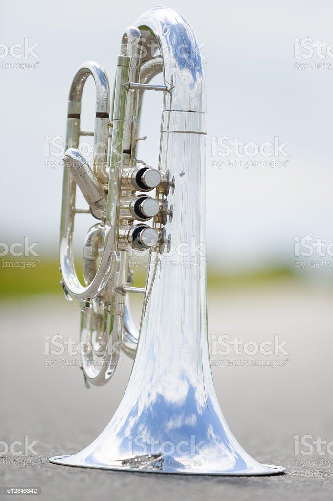 Portrait of a silver baritone stock photo