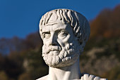 Portrait of a stones statue of Aristotle on a sunny day