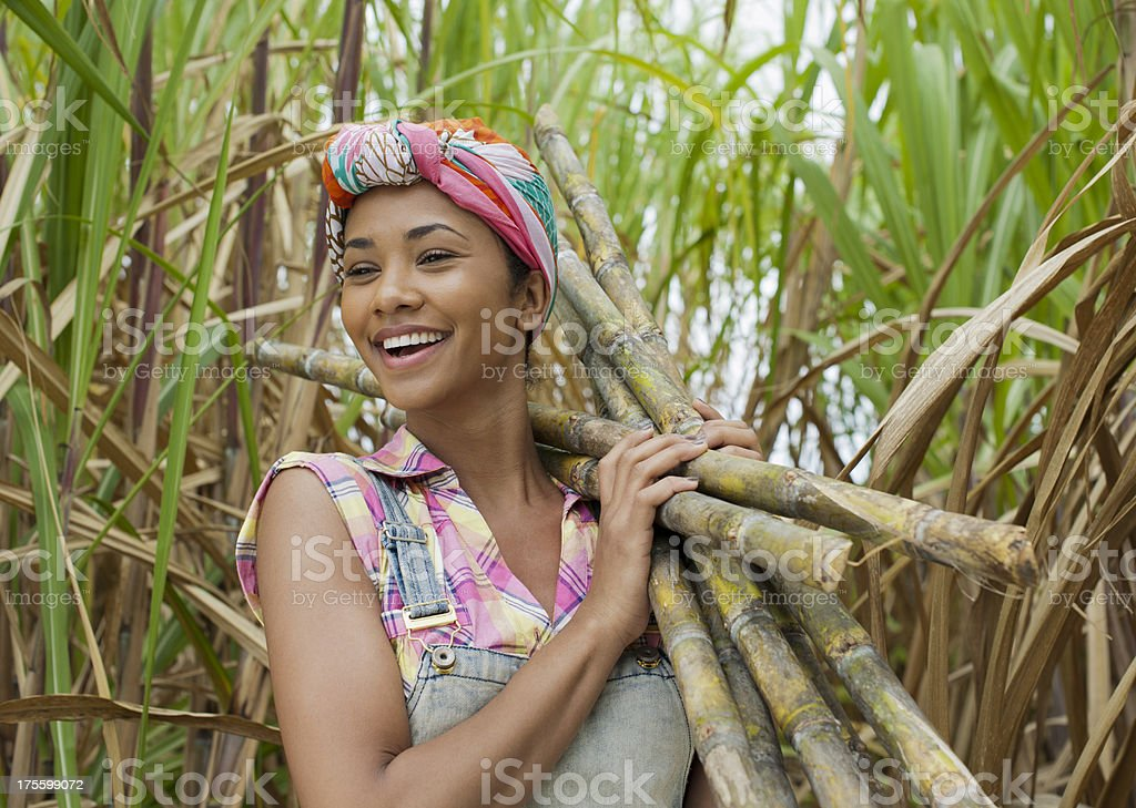 Portrait of a sugar cane worker stock photo