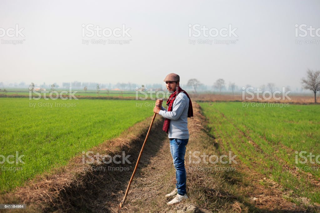 Portrait of a young men standing in green field stock photo