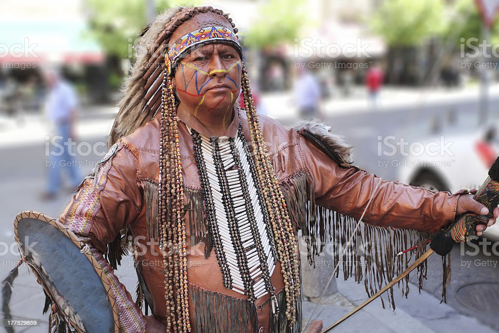 Portrait of american indian. stock photo