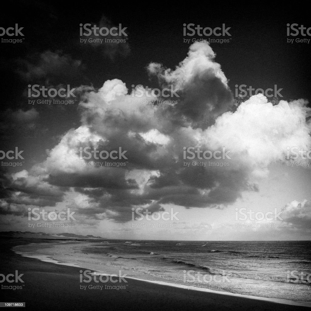 Portrait of Beach, Black and White royalty-free stock photo