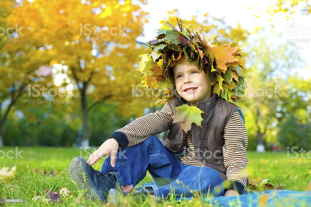 Portrait of beautiful child in wreath from autumn leaves royalty-free stock photo