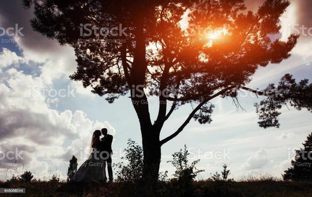 Portrait of beautiful wedding couple at sunset stock photo