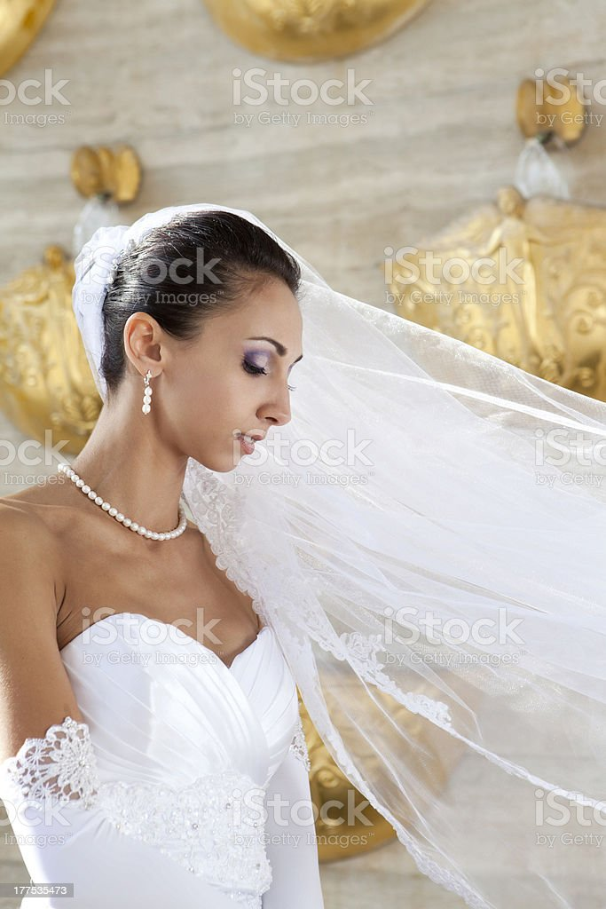 Portrait of beautiful young bride royalty-free stock photo