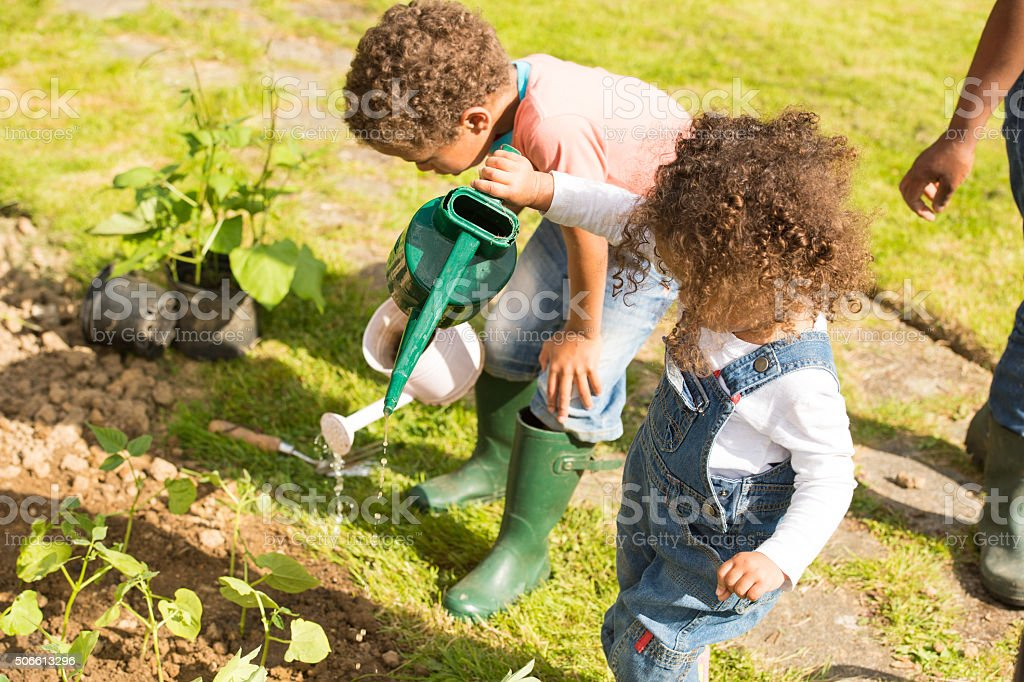 Portrait of Biracial Little Boy And Toddler Watering Vegetables stock photo