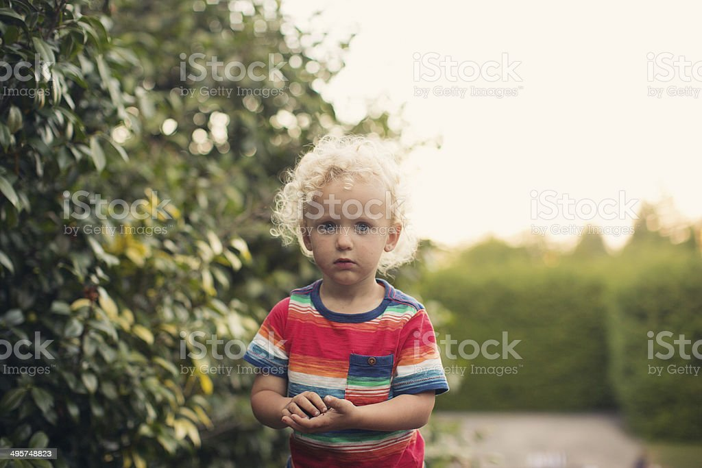 Portrait of boy in summer time stock photo