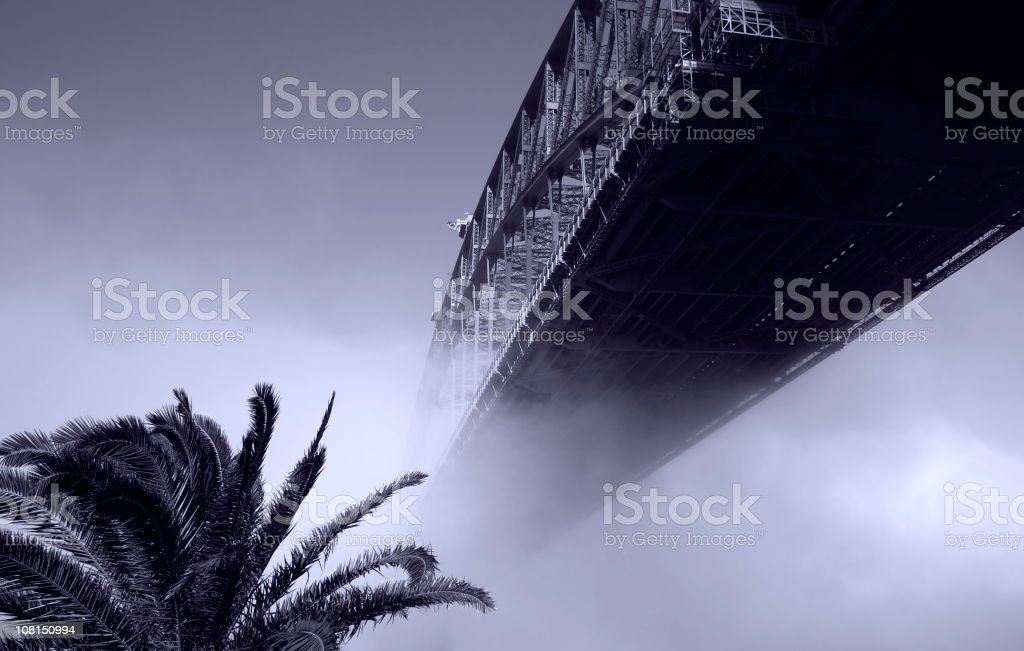 Portrait of Bridge and Palm Tree in Fog, Toned stock photo