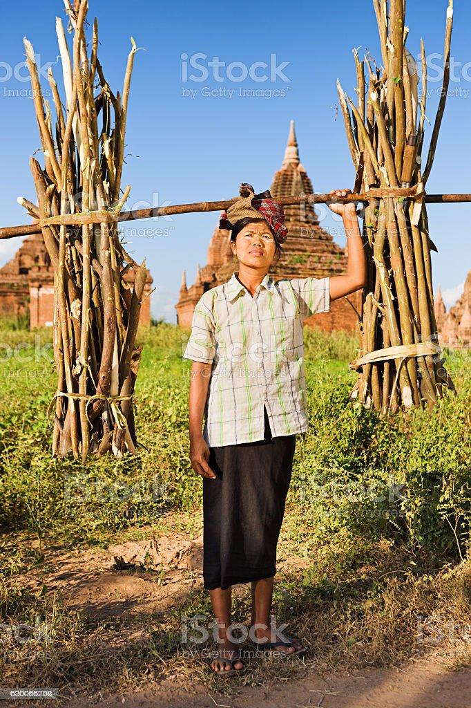 Portrait of burmese woman carrying brushwood stock photo