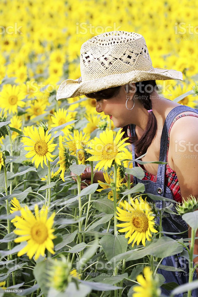 Porträt eines Landes Mädchen in Sonnenblume-Feld Lizenzfreies stock-foto