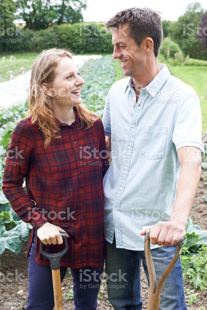 Portrait Of Couple Working In Organic Farm Field stock photo
