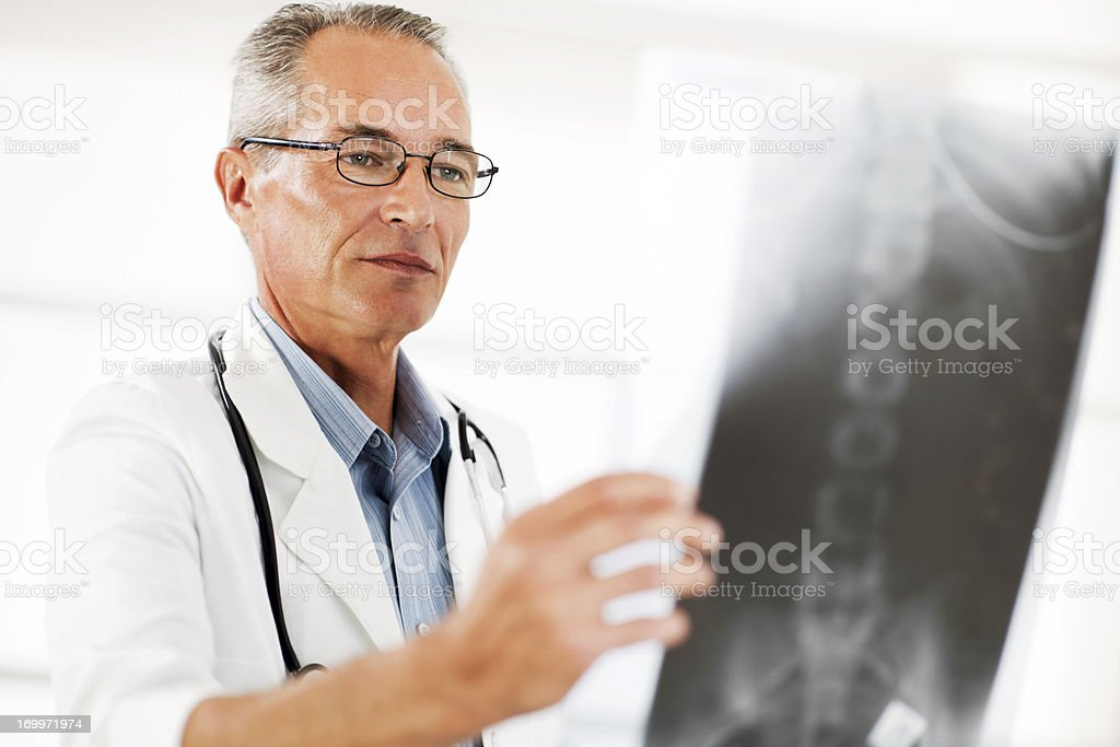 Portrait of doctor examining spine X-ray. stock photo