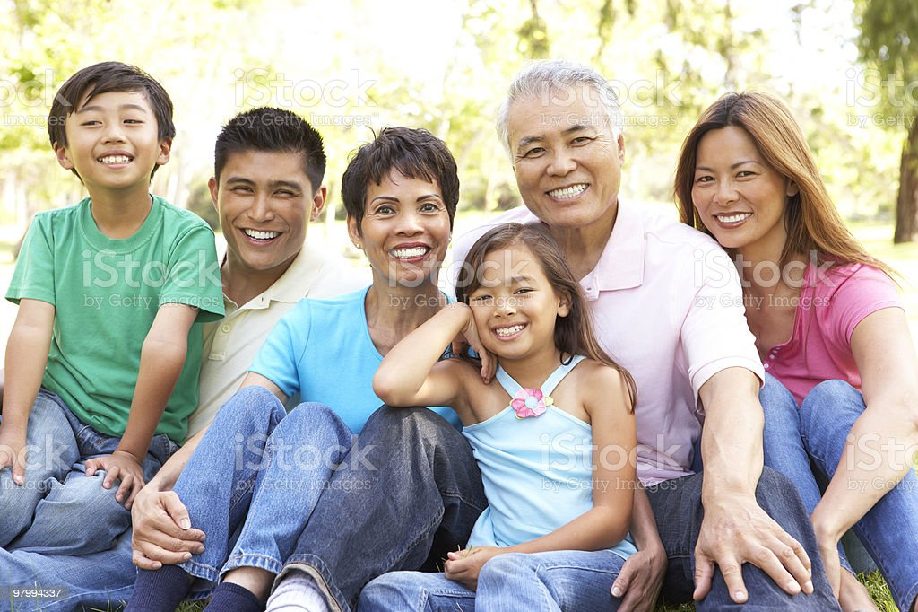 Portrait Of Extended Family Group In Park royalty-free stock photo