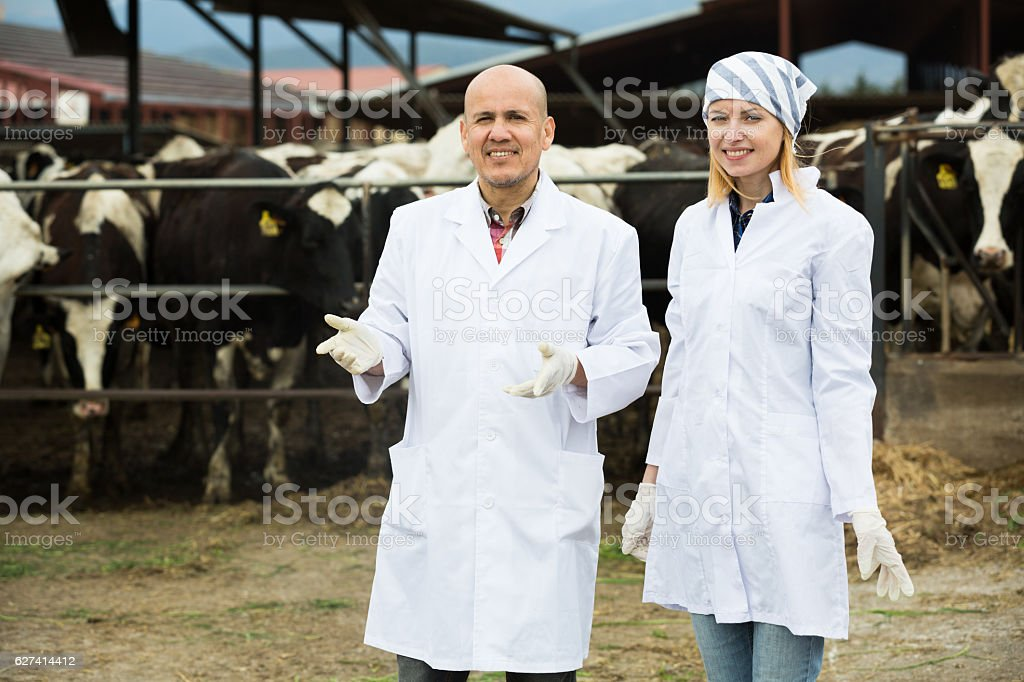 Portrait of farm workers in cowhouse stock photo