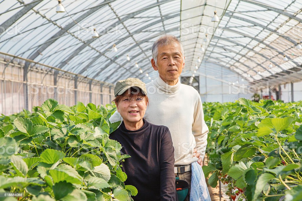 Portrait of farmers in greeenhouse stock photo