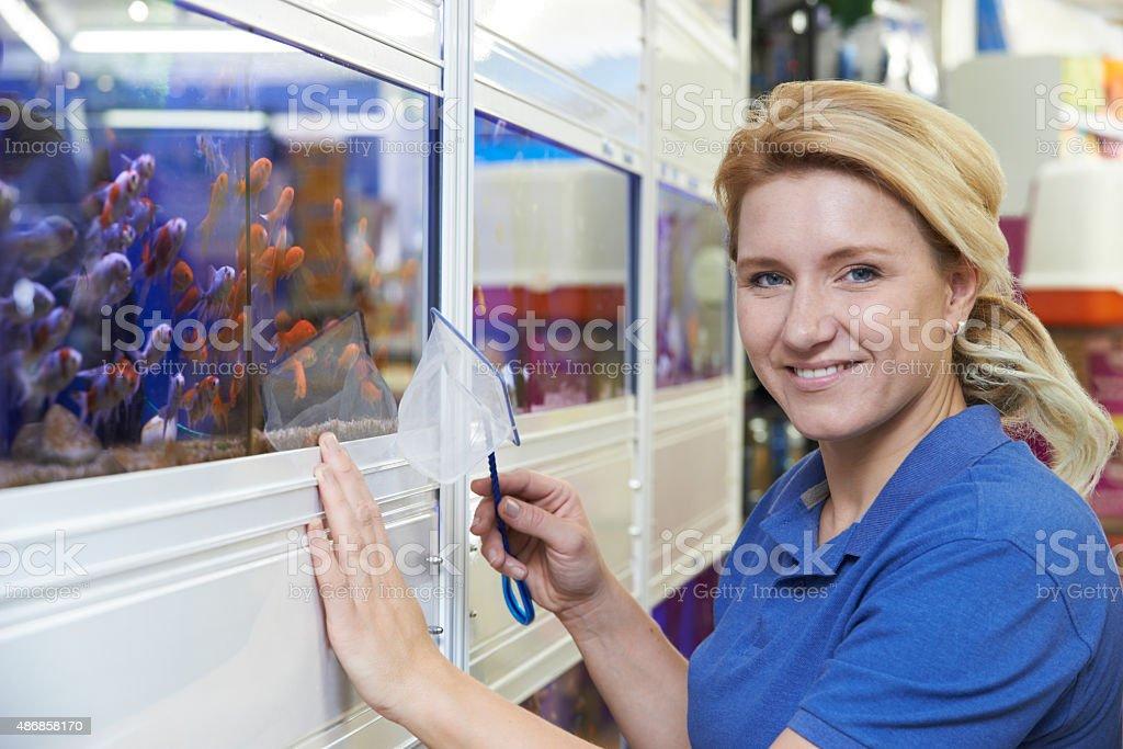 Portrait Of Female Employee In Pet Store stock photo