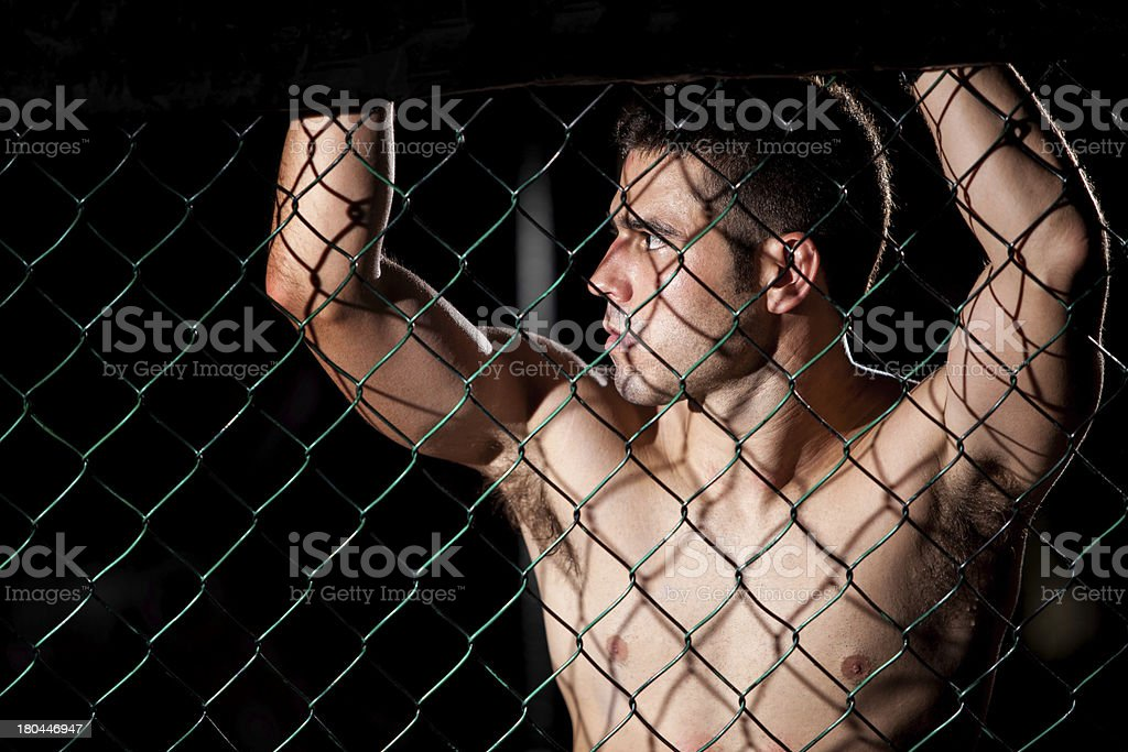 Portrait of fighter in a cage royalty-free stock photo