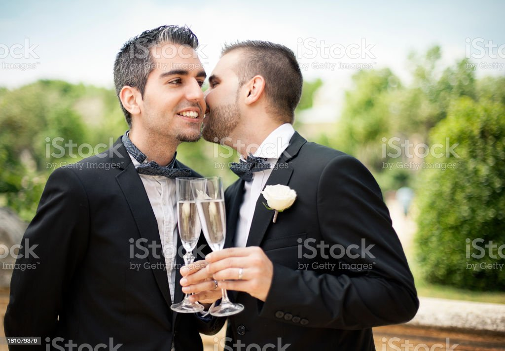 Portrait of Gay Couple making a toast stock photo