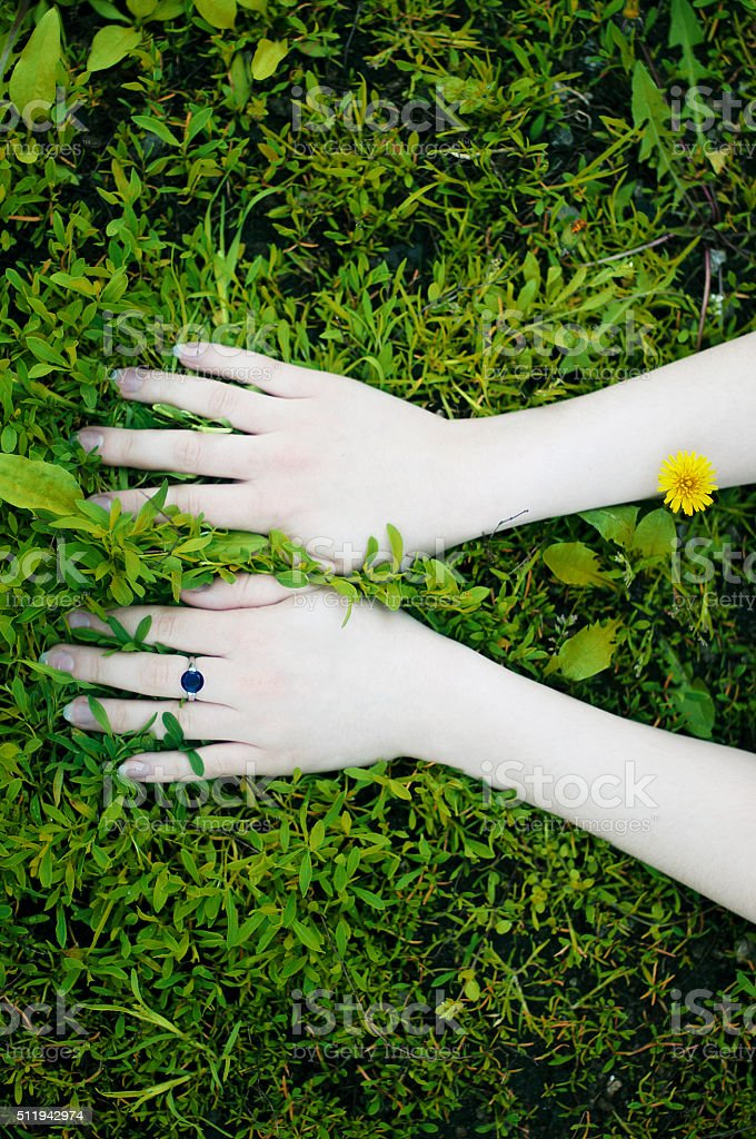 Portrait of hands on a background of flowers. stock photo