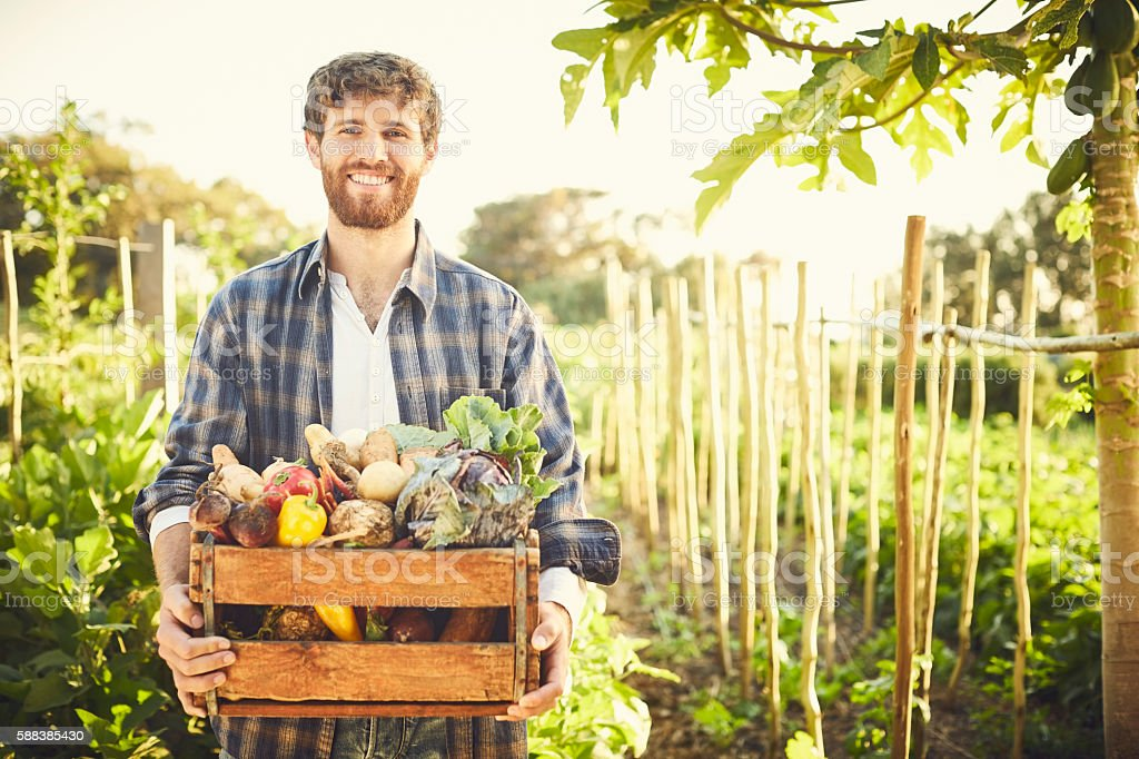 Portrait of happy male carrying vegetables in crate at farm stock photo
