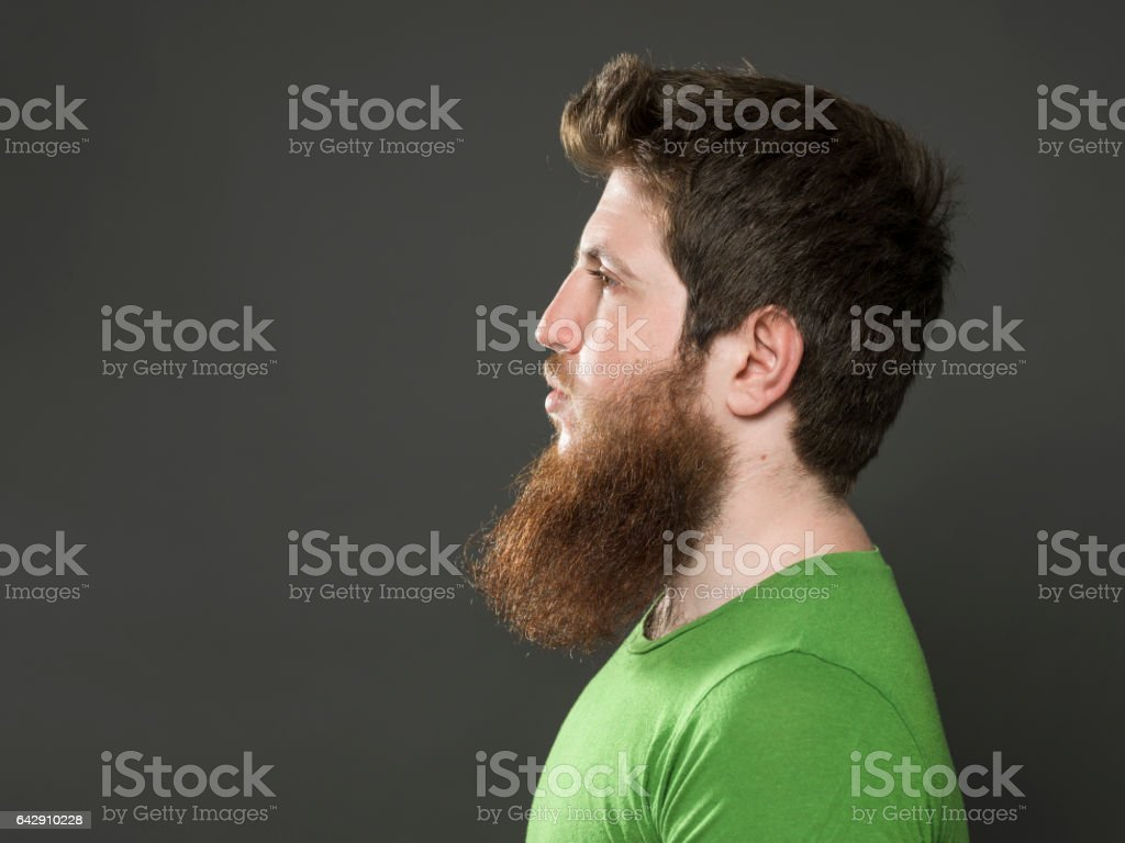 Portrait Of Hipster With Blonde Long Facial Hair stock photo