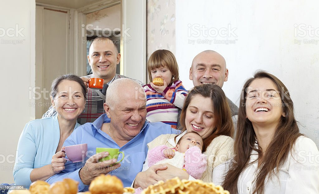 Portrait of large multigeneration family royalty-free stock photo