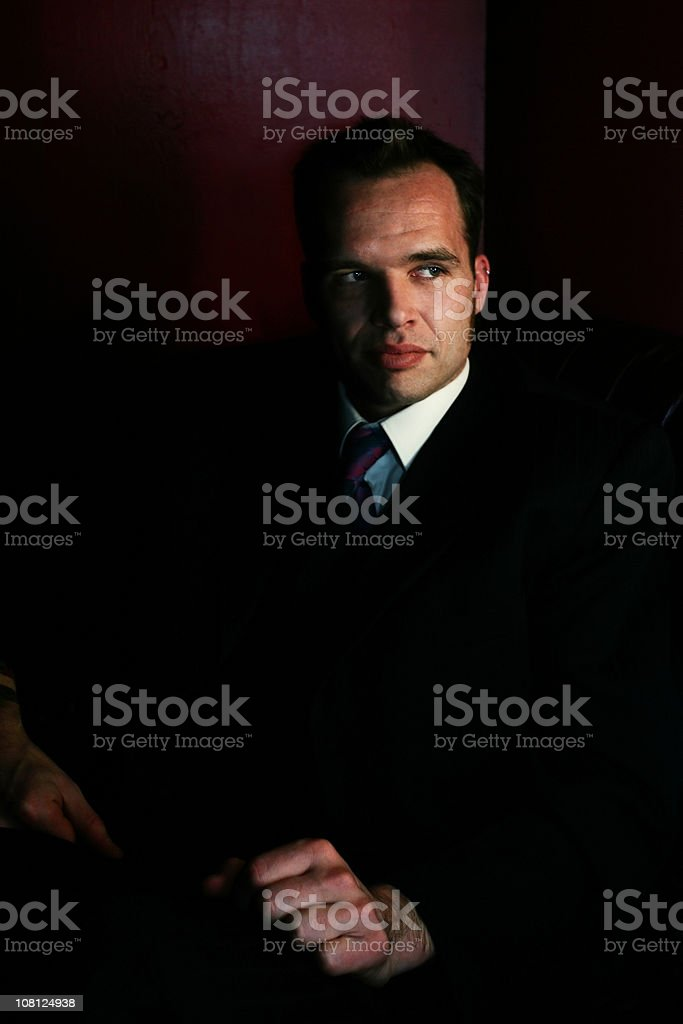 Portrait of Man Wearing Suit and Tie royalty-free stock photo
