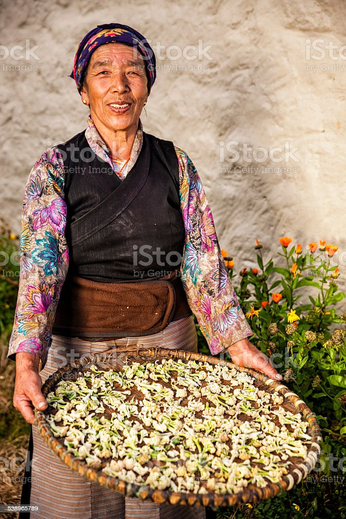 Portrait of Nepali woman in Everest region stock photo
