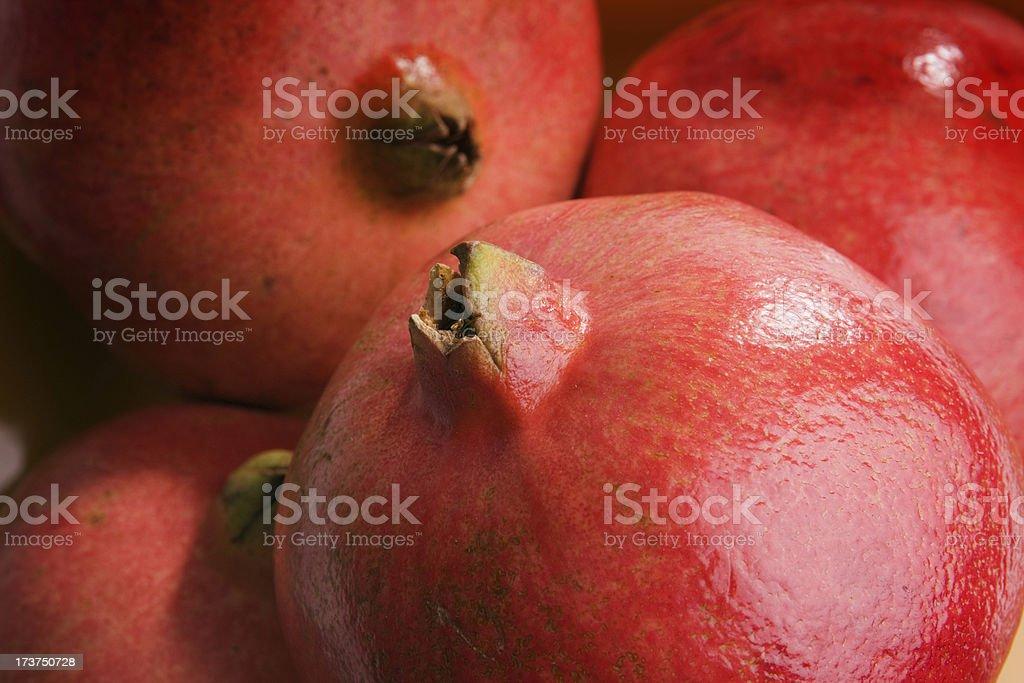 Portrait of Pomegranate royalty-free stock photo