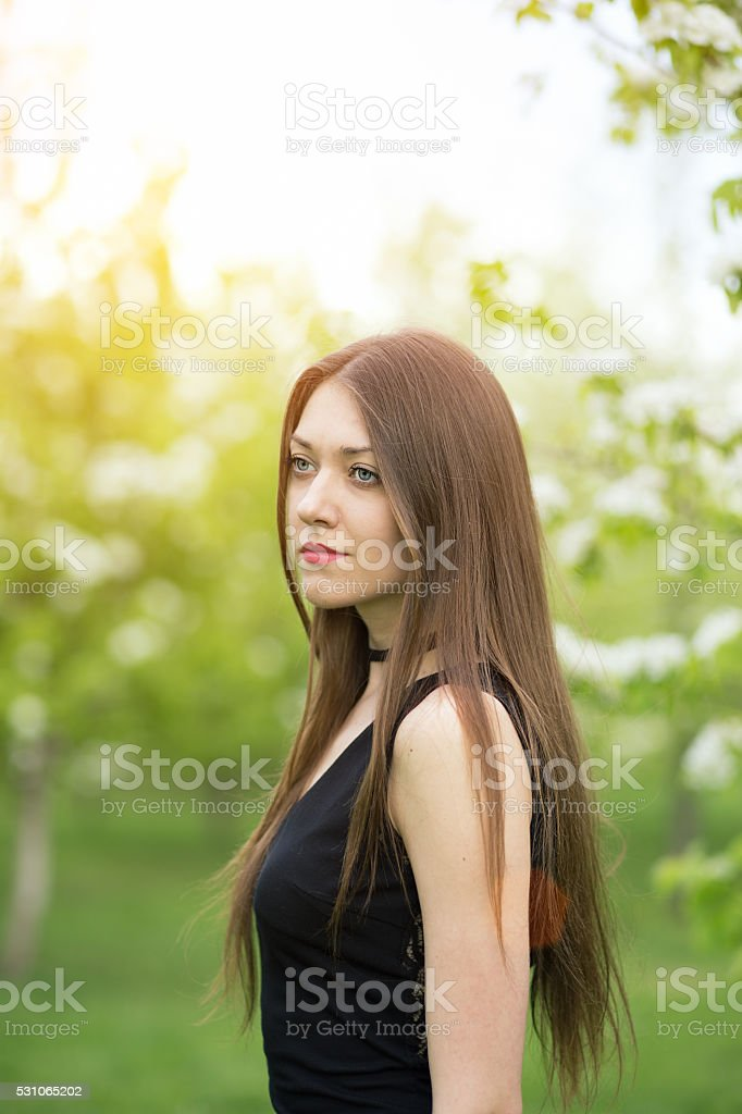 portrait of pretty young classic style woman in  black dress stock photo