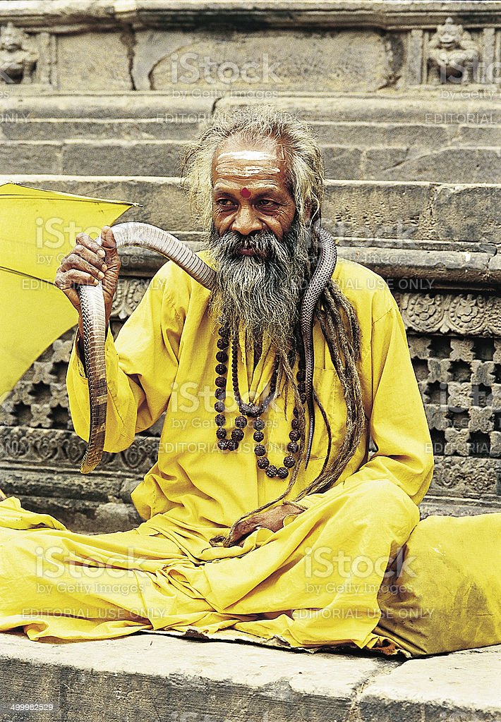 Portrait of Sadhu with a snake sitting outside the temple stock photo