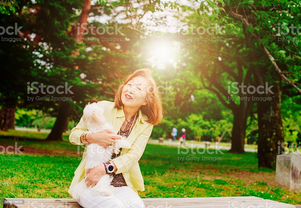 Portrait of senior Japanese woman walking her dog stock photo