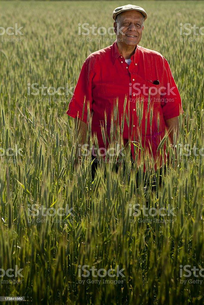 Portrait Of Senior Man Walking In Field royalty-free stock photo